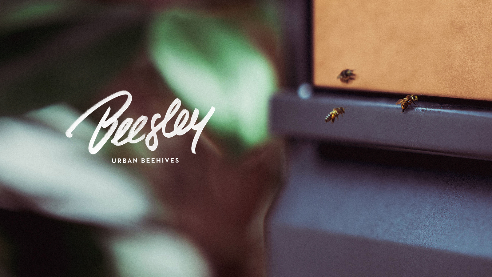 beesley_title